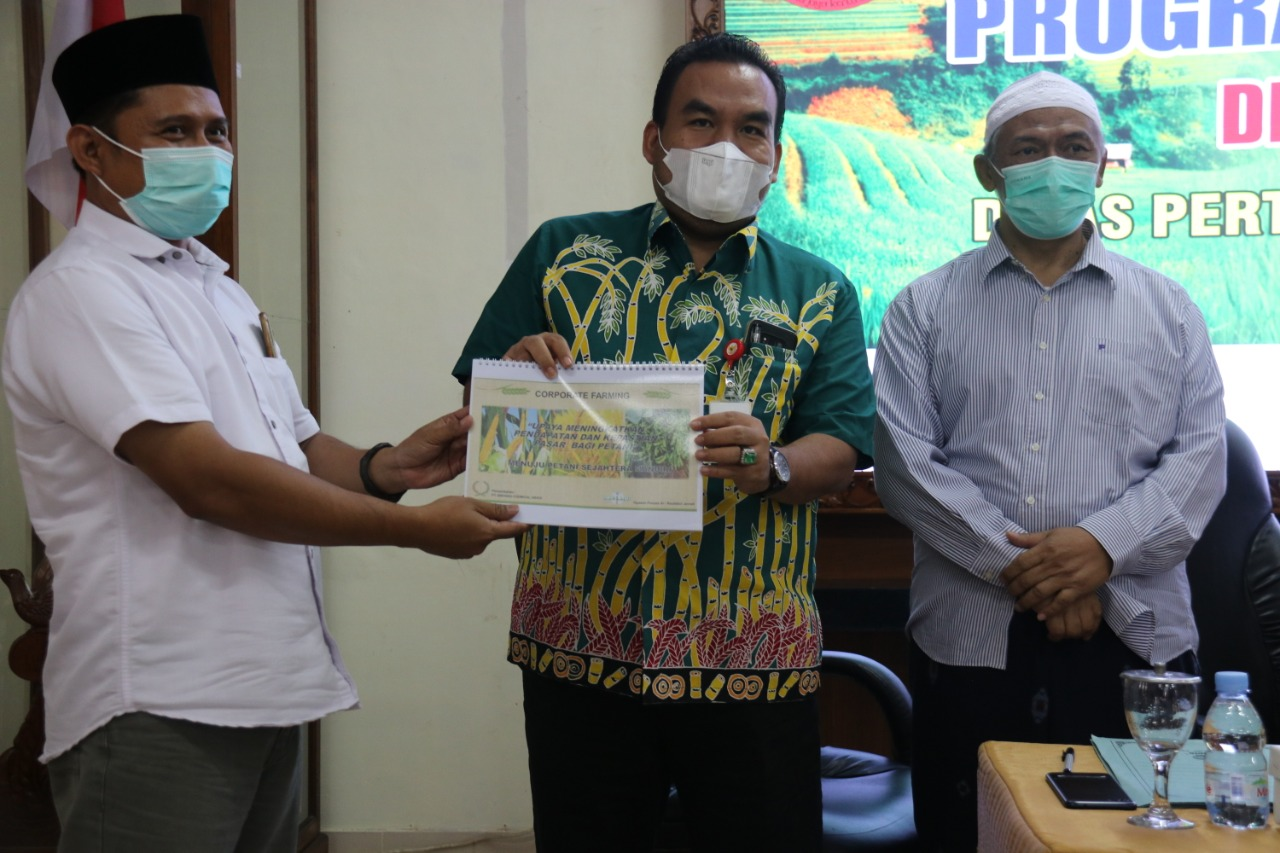 Program Agro Solution PT. Petrokimia Gresik Tingkatkan ...
