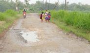 Pemdes Gedebeg Mulai Larang Warga Tanam Rumput Gajah di Bahu Jalan