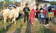 Anggota DPRD Blora Serahkan Satu Ekor Hewan Qurban di SLB Randublatung